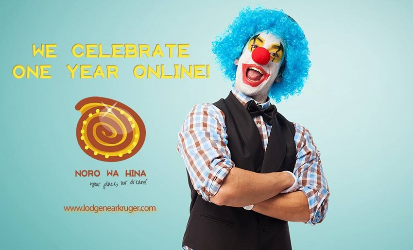 We celebrate one year online